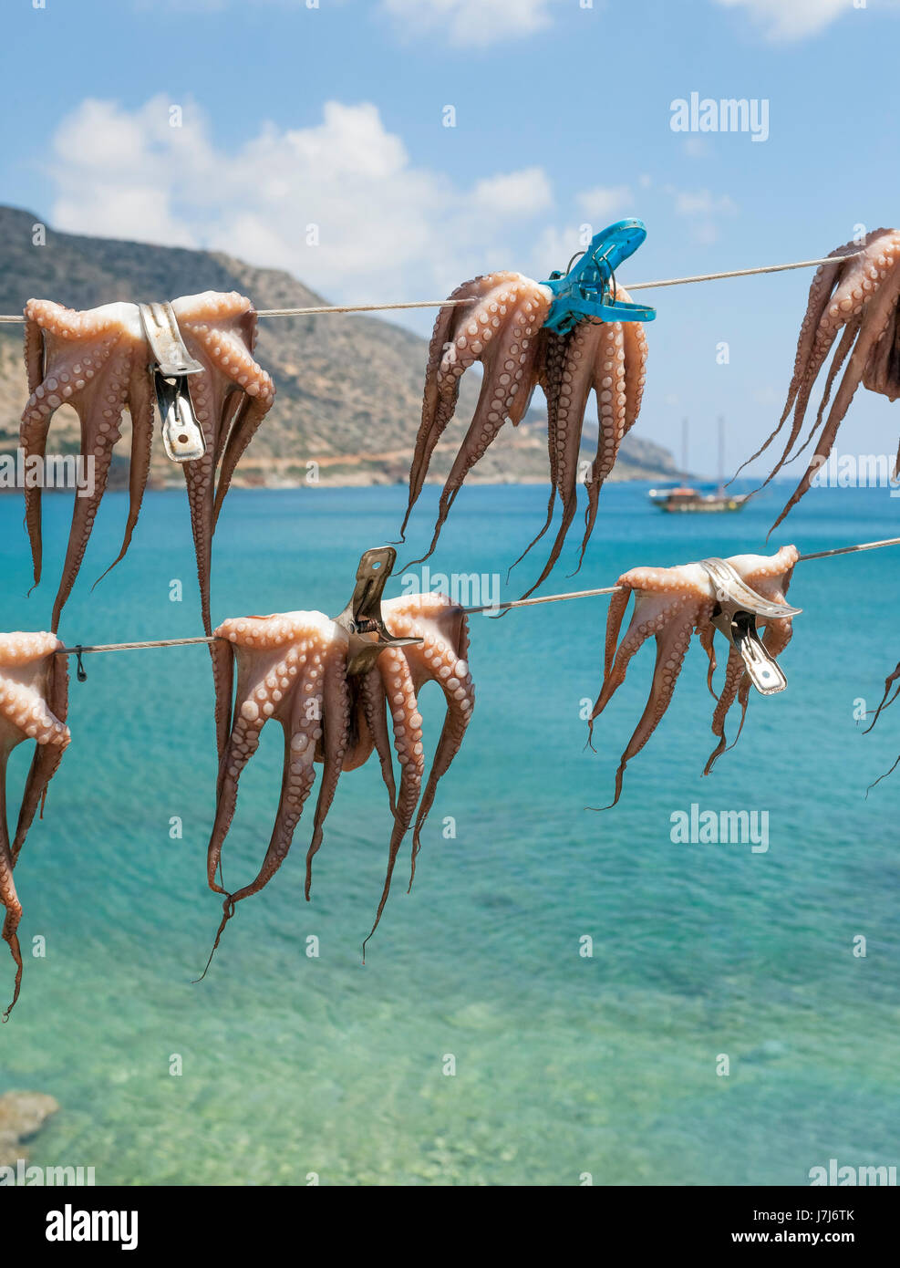 Octopuses hung up to dry on washing lines, Plaka beach, Crete, Greece, Europe - Stock Image