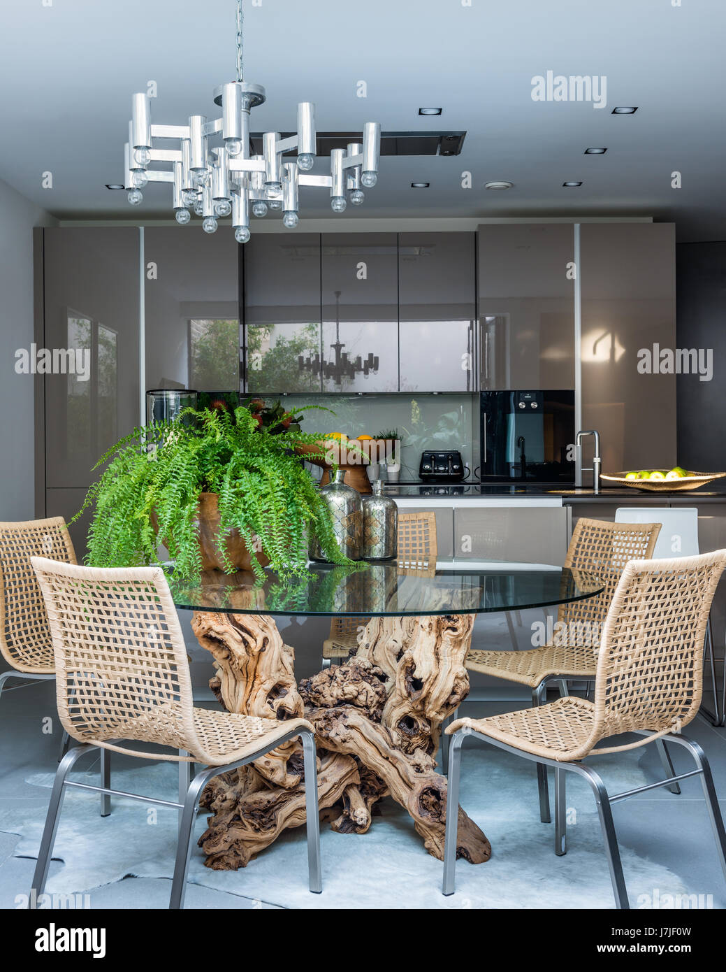 Tree root dining table by Hugh McLaughlin in kitchen with Ikea dining chairs and bar stools and high gloss units Stock Photo