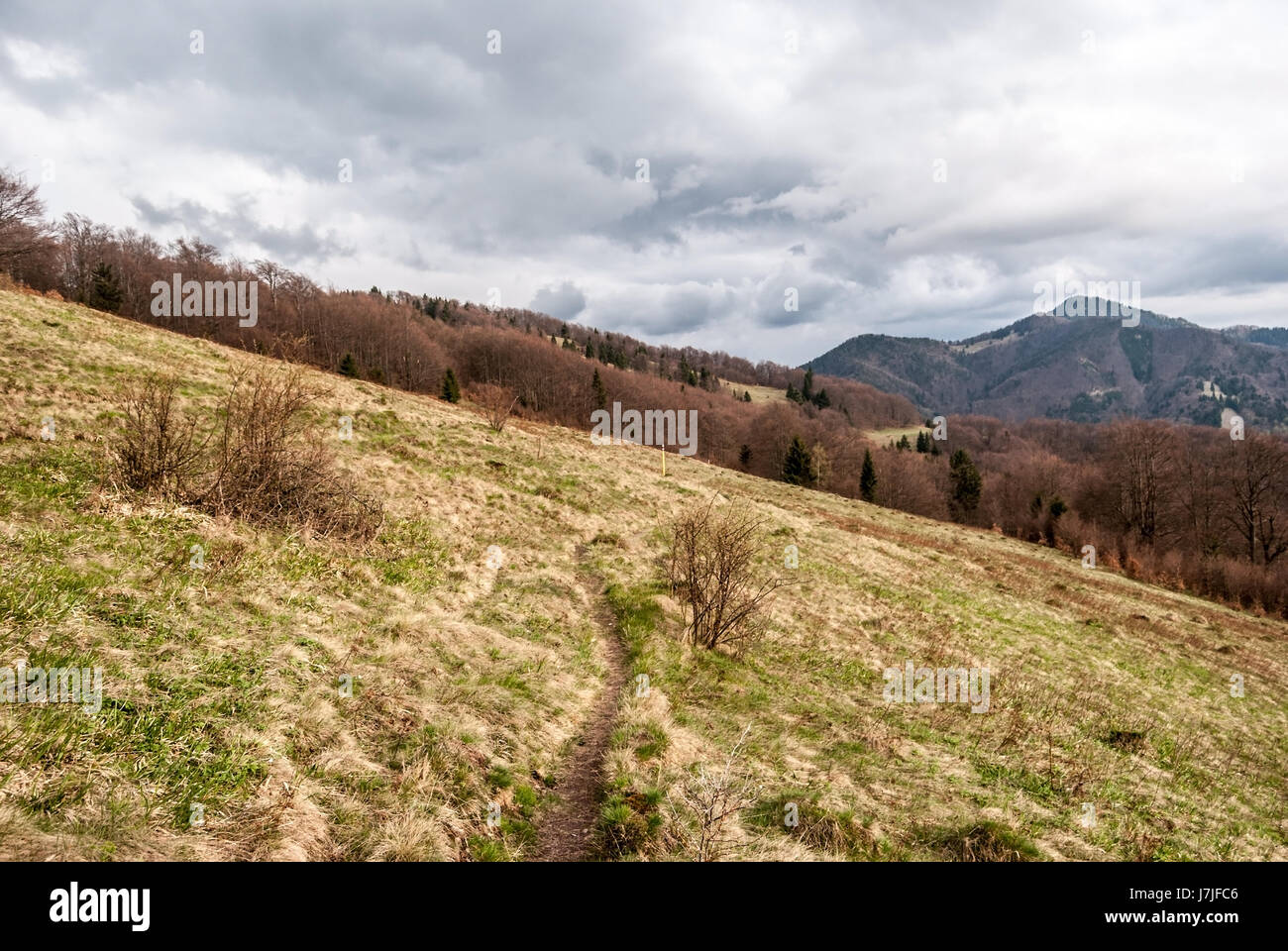 spring Velka Fatra mountains in Slovakia with mountain meadow, hiking trail and hills Stock Photo