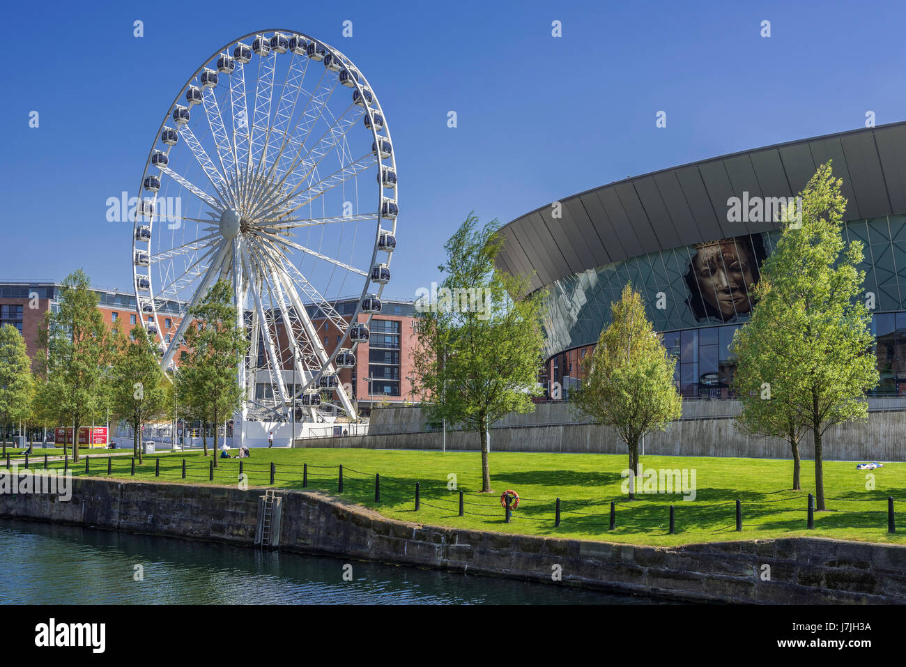 The big wheel and Echo Arena at the Albert Dock complex in Liverpool. Merseyside. North West Engalnd. Ferris Wheel - Stock Image