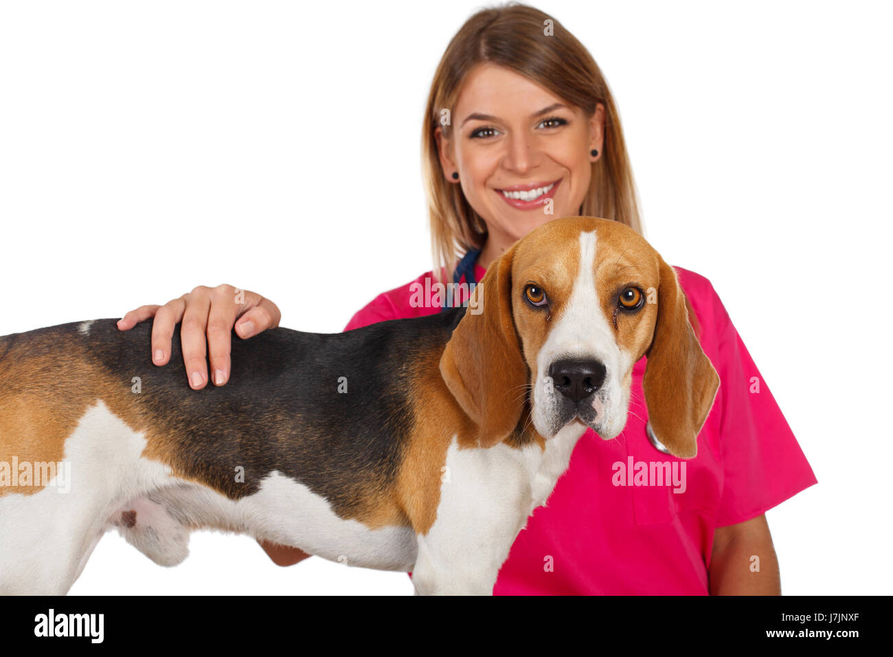 Picture of a beautiful young veterinarian with a cute beagle Stock Photo
