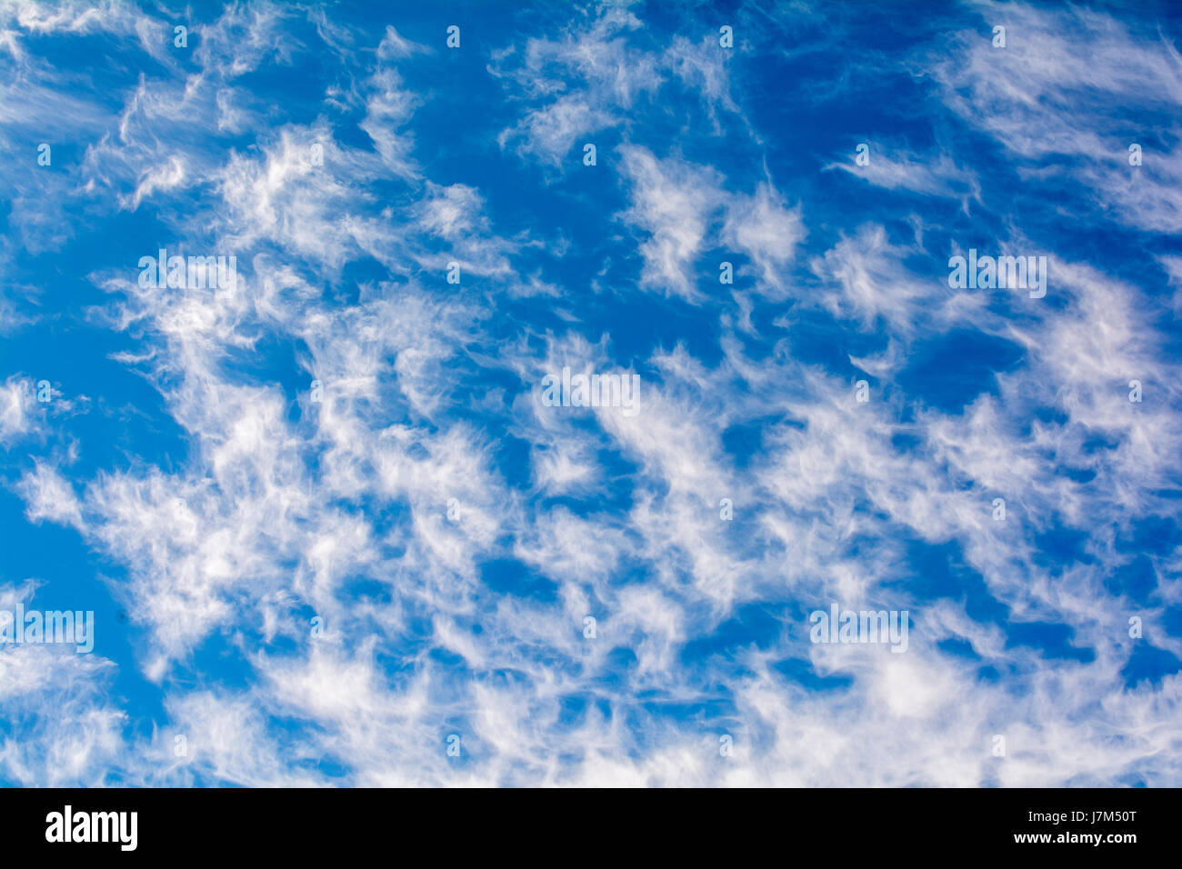 cute cirrus clouds in the blue sky picture perfect stock photo