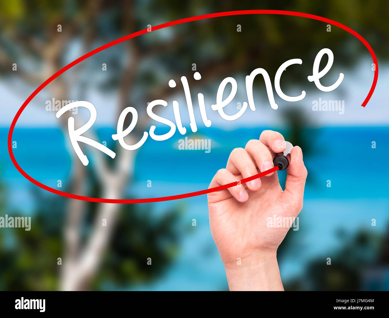 Man Hand writing Resilience with black marker on visual screen. Isolated on nature. Business, technology, internet - Stock Image