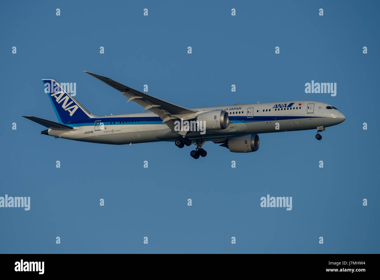 ANA Airlines Boeing 787 Dreamliner on Final approach to Sydney Airport on Tuesday 23 May 2017 - Stock Image