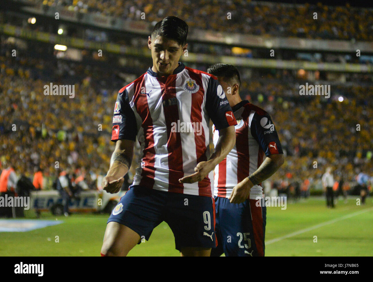 aa3bf0781f3 Chivas of Guadalajara player Alan Pulido celebrates after scoring a goal  against Tigres during the match for the first leg of the Clausura 2017  Tournament