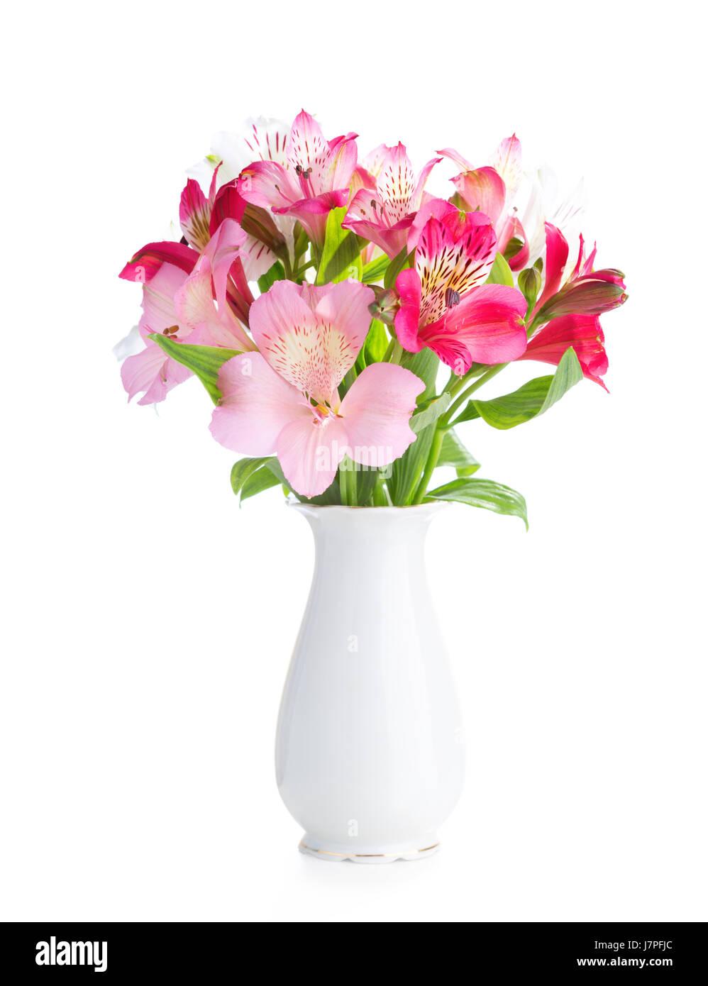 Bouquet of alstroemeria flowers in white porcelain vase isolated on bouquet of alstroemeria flowers in white porcelain vase isolated on white background mightylinksfo