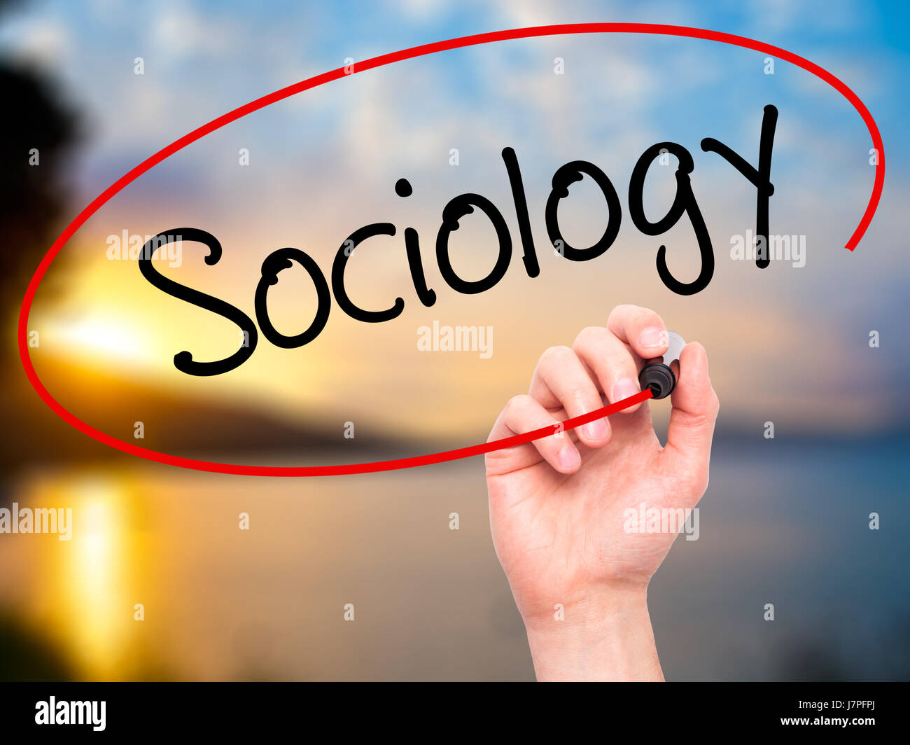 Man Hand writing Sociology  with black marker on visual screen. Isolated on background. Business, technology, internet - Stock Image