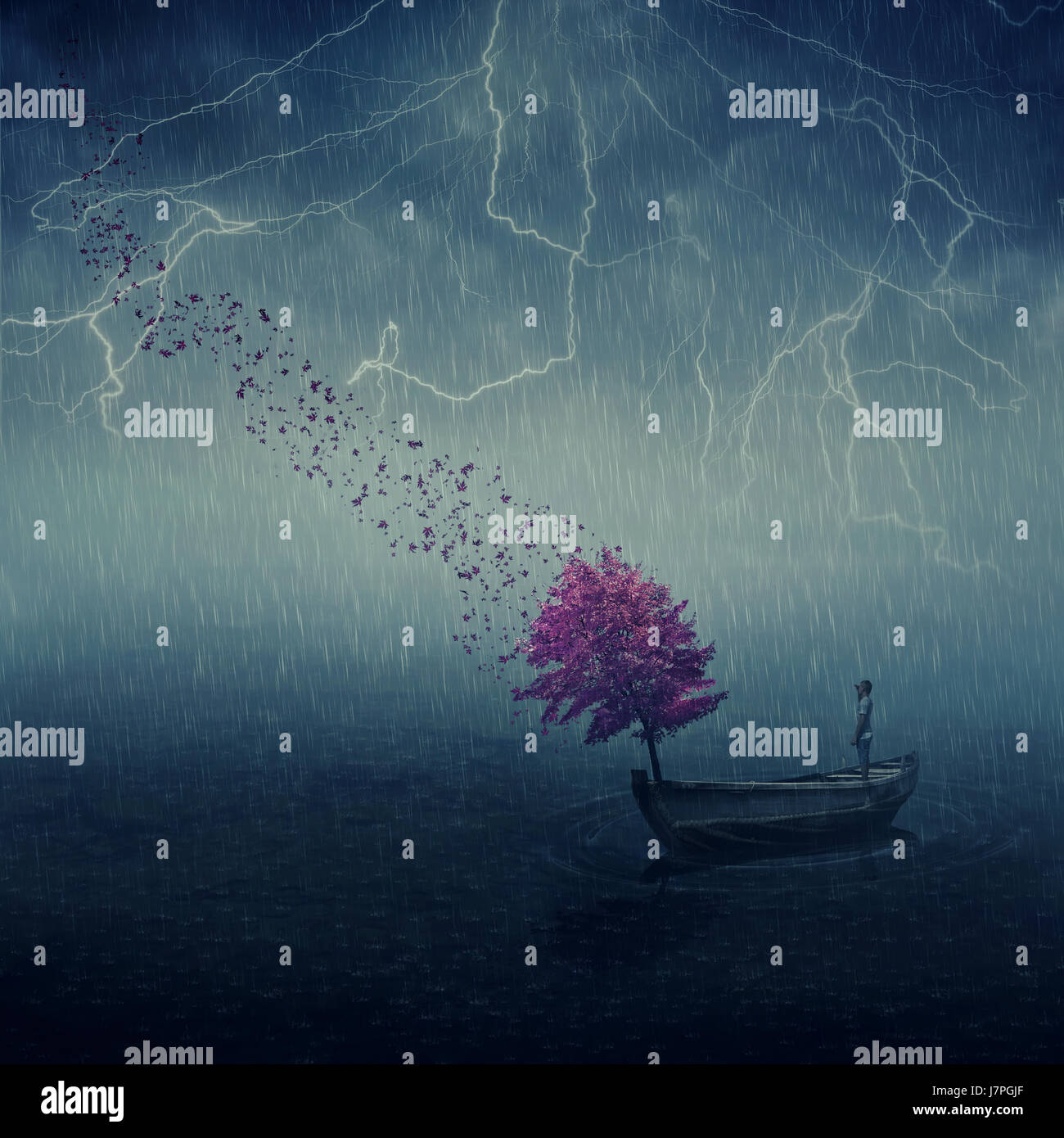 Surrealistic image as lonely boy floating in a wooden boat with a purple tree that cast its leaves in the wind. Lost in the middle of the sea, below t Stock Photo