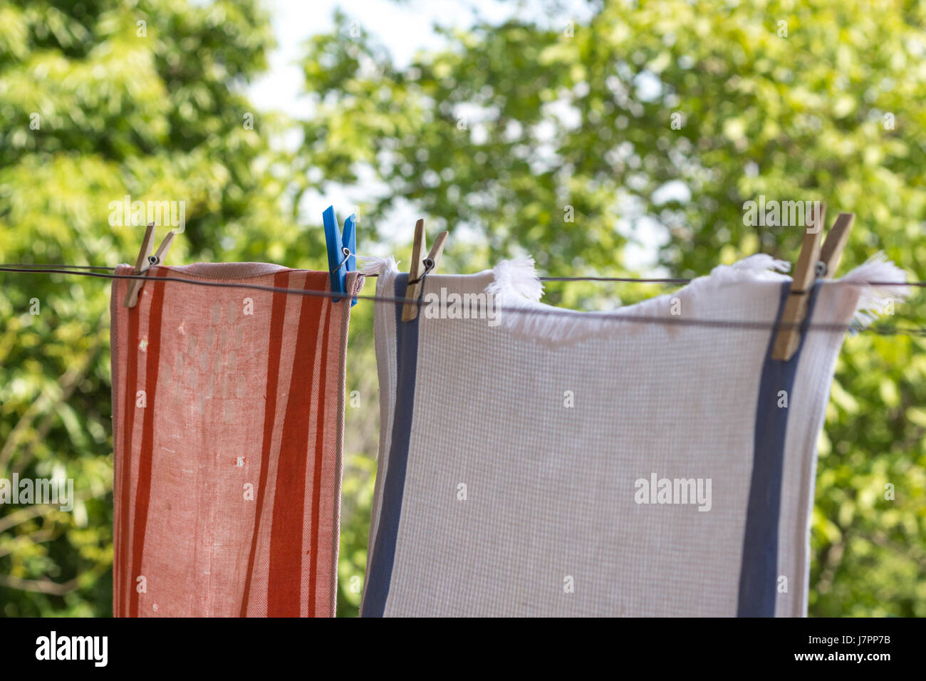 Two old towels hanging up with pegs outside to dry. - Stock Image