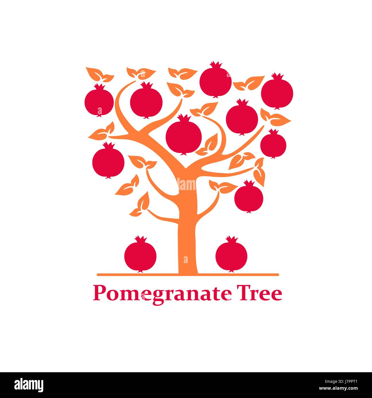 Pomegranate Tree Isolated On White Background Hand Drawn Flat Style Stock Vector Image Art Alamy