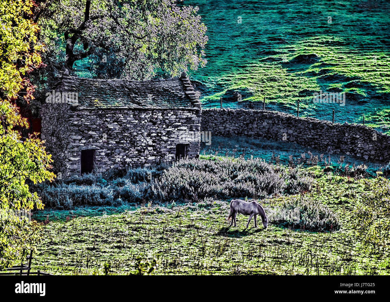 Pictorial Art-Image The English Lake District - Stock Image