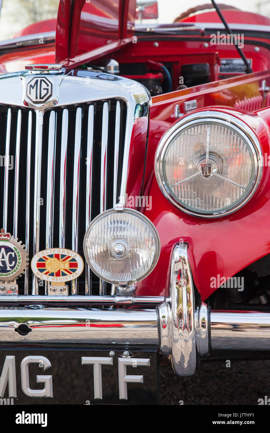 Front grill of a British Sports Car, 1955 MG TF 1500 Roadster on display in Franklin, Tennessee, USA - Stock Image