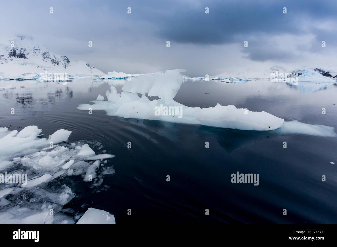 Antarctica ice flows in calm Paradise Bay - Stock Image