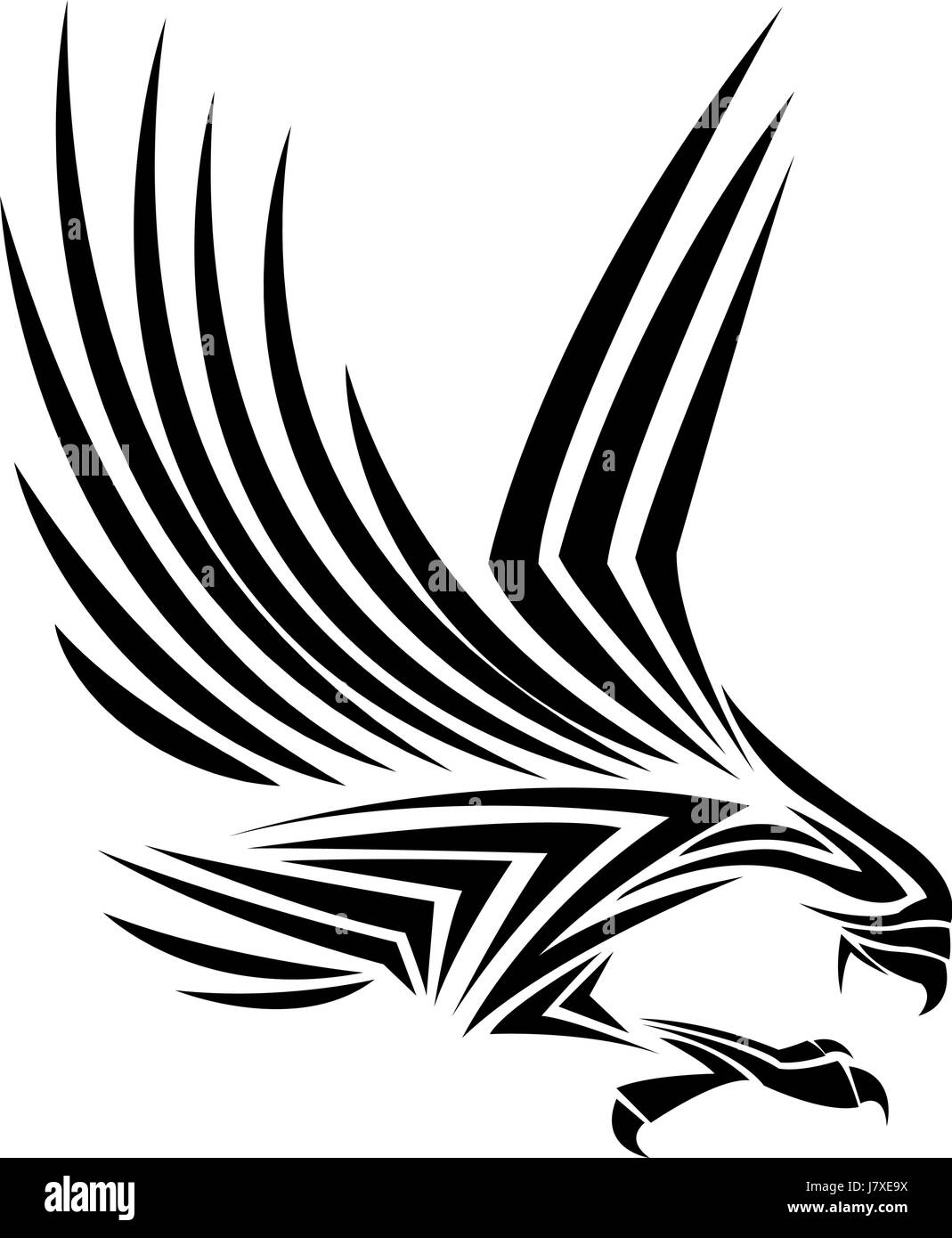 Flying eagle spread out its feather black eagle on white background stock
