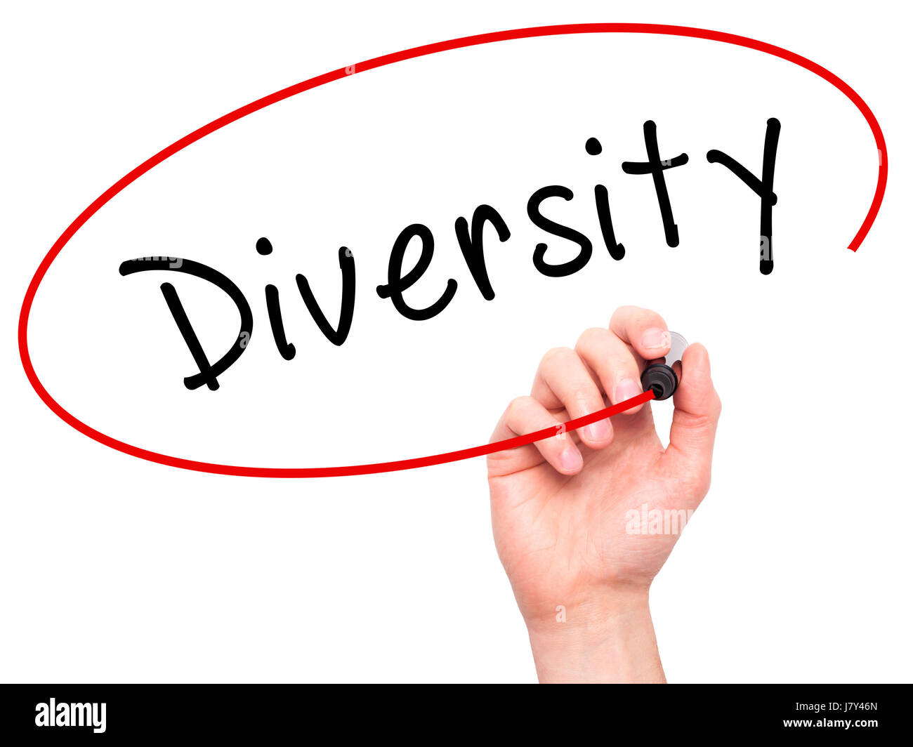 Man Hand writing Diversity with marker on transparent wipe board. Isolated on white. Business, internet, technology - Stock Image