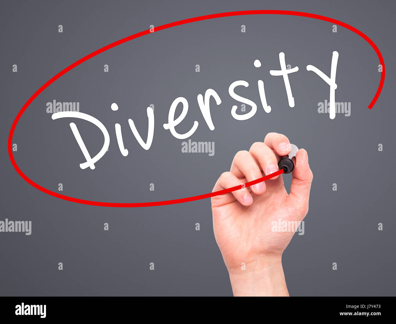 Man Hand writing Diversity with marker on transparent wipe board. Isolated on grey. Business, internet, technology - Stock Image