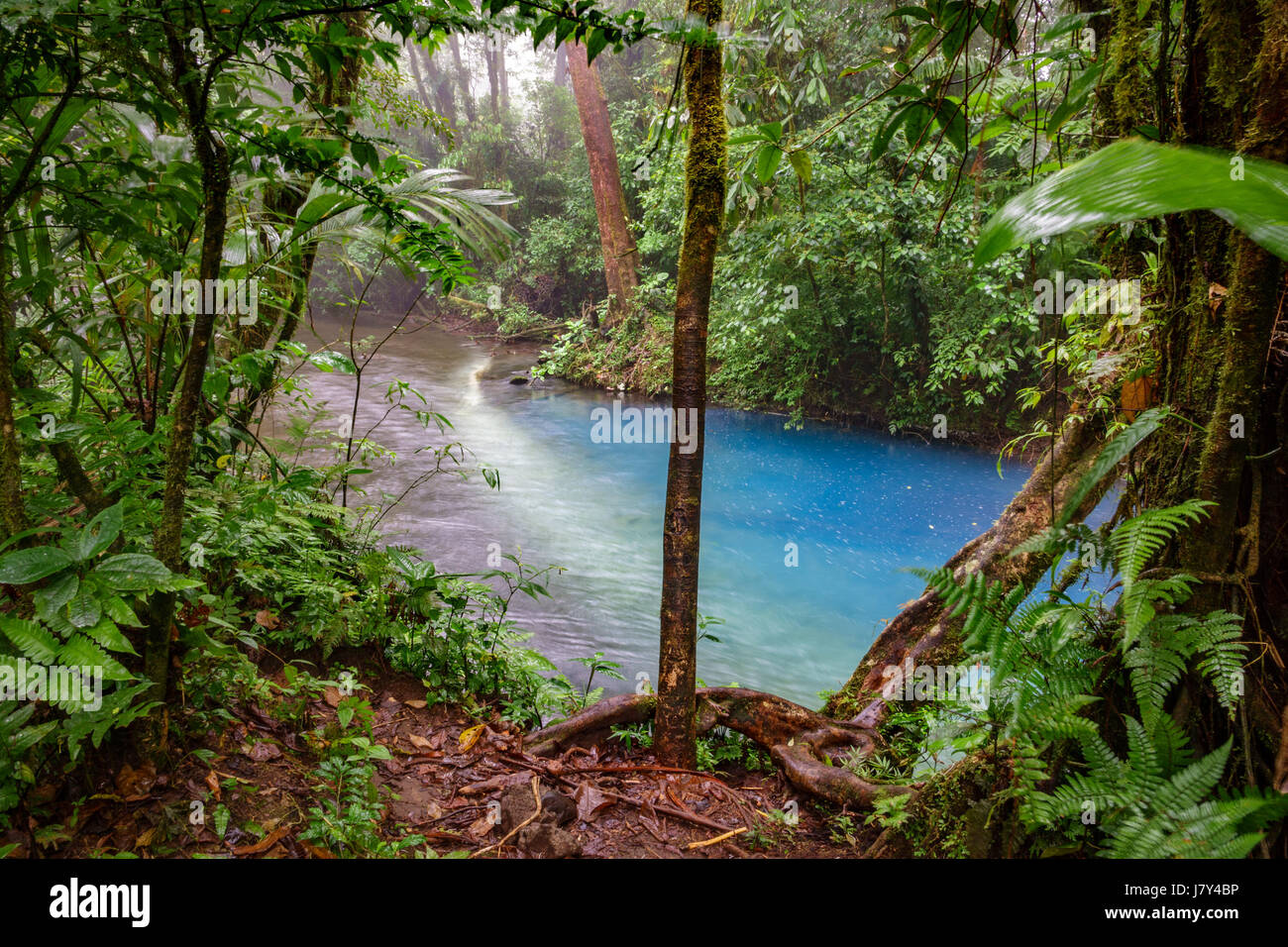 The start of blue river in Costa Rica - Stock Image