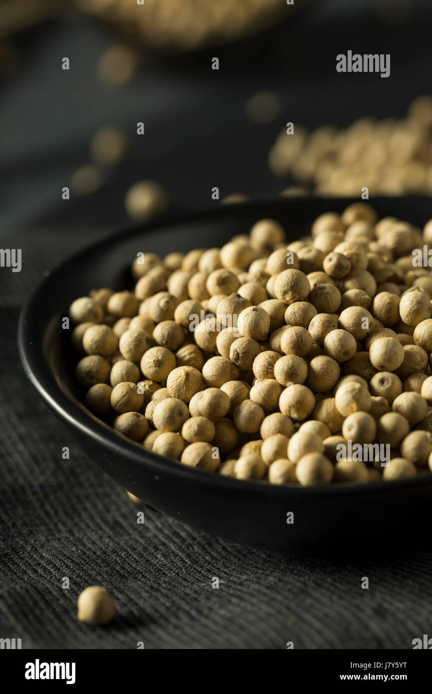 Dry Organic White Peppercorns to Season With - Stock Image
