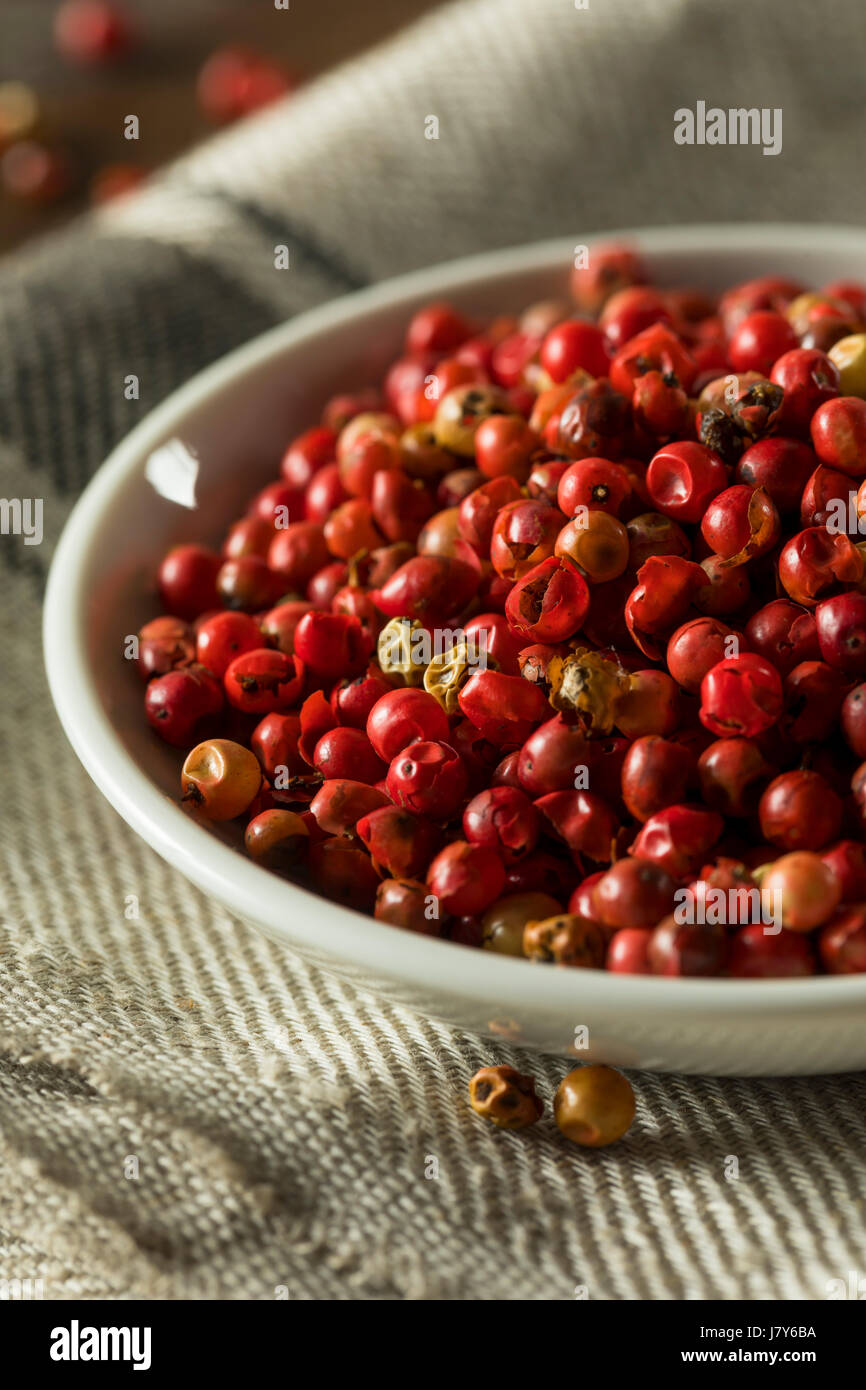 Dry Organic Red Peppercorns Ready to Grind Up - Stock Image