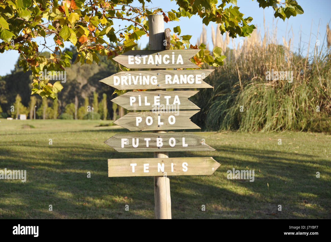 Multi-directional wooden sign in country club indicating various sporting activities in Spanish with green natural - Stock Image