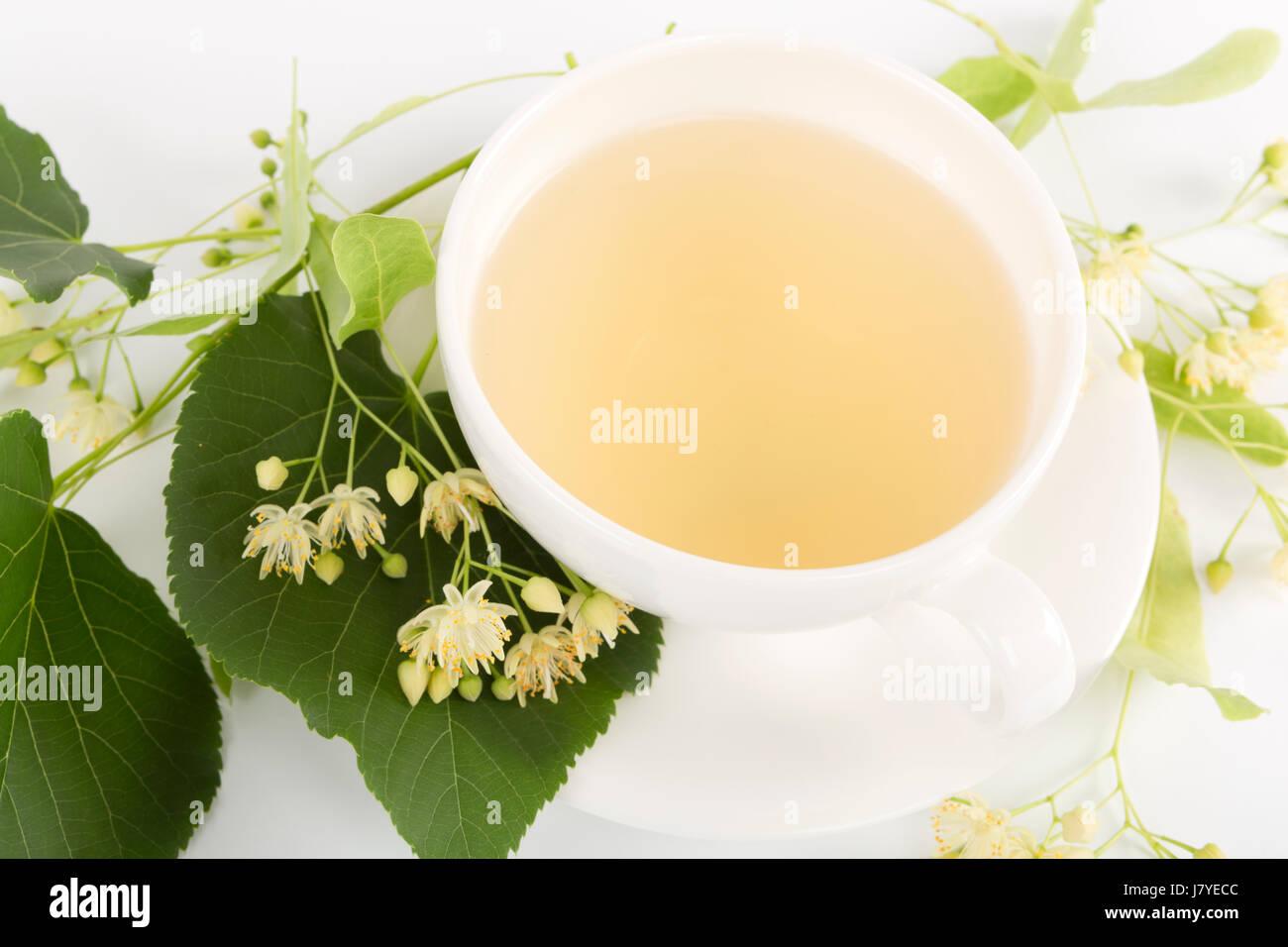 Studio shot of hot linden tea in a fine white porcelain cup on a wooden tabletop. Large-leaved Linden, Tilia platyphyllos. Stock Photo