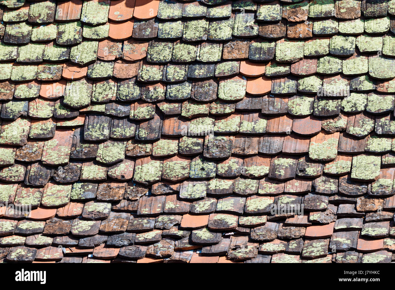 Mossy Roof Tiles Old Roof Detail Germany Stock Photo