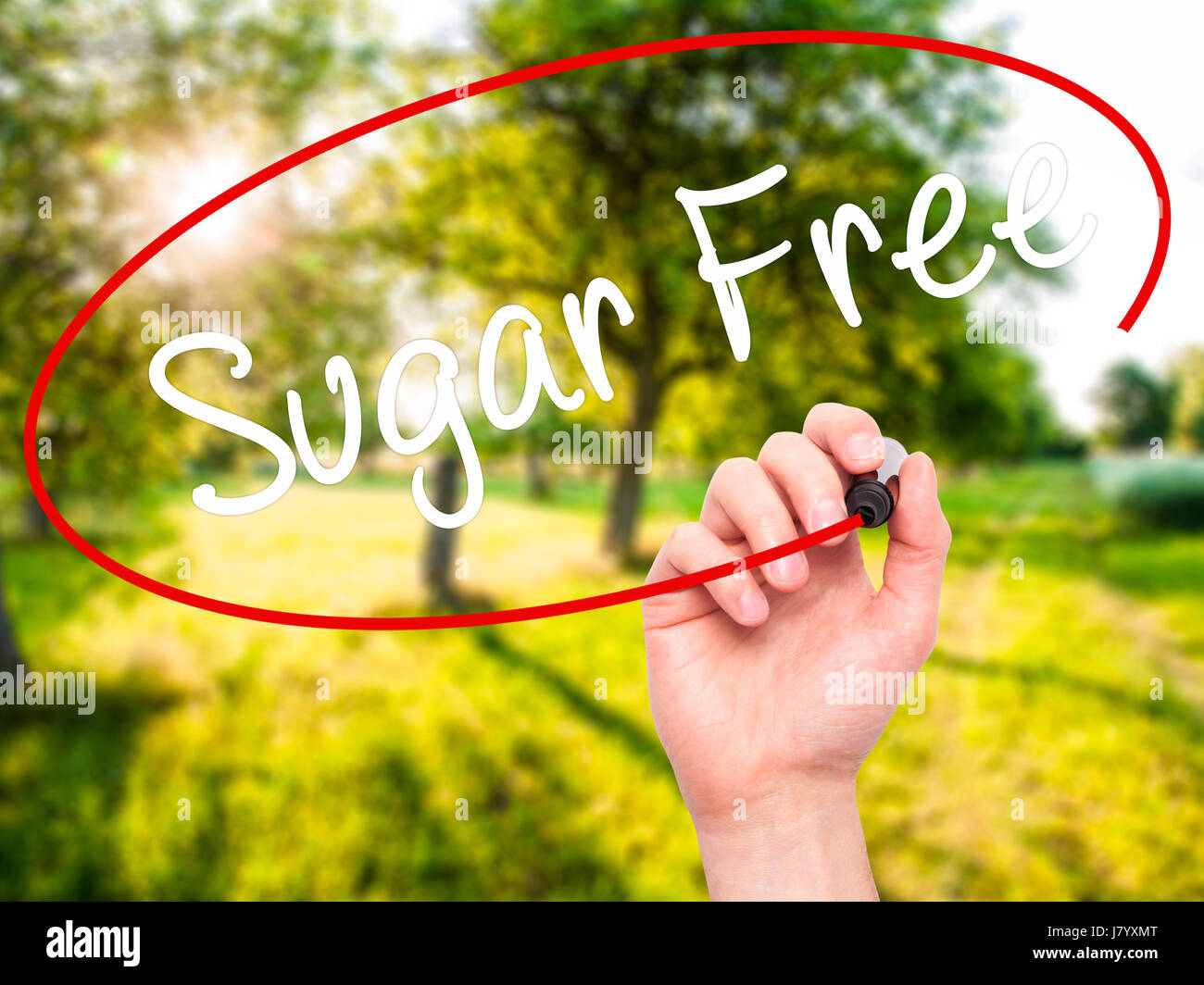 Man Hand writing Sugar Free with black marker on visual screen. Isolated on nature. Business, technology, internet - Stock Image