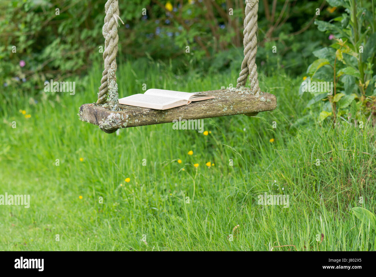 open book outdoors on tree swing - Stock Image