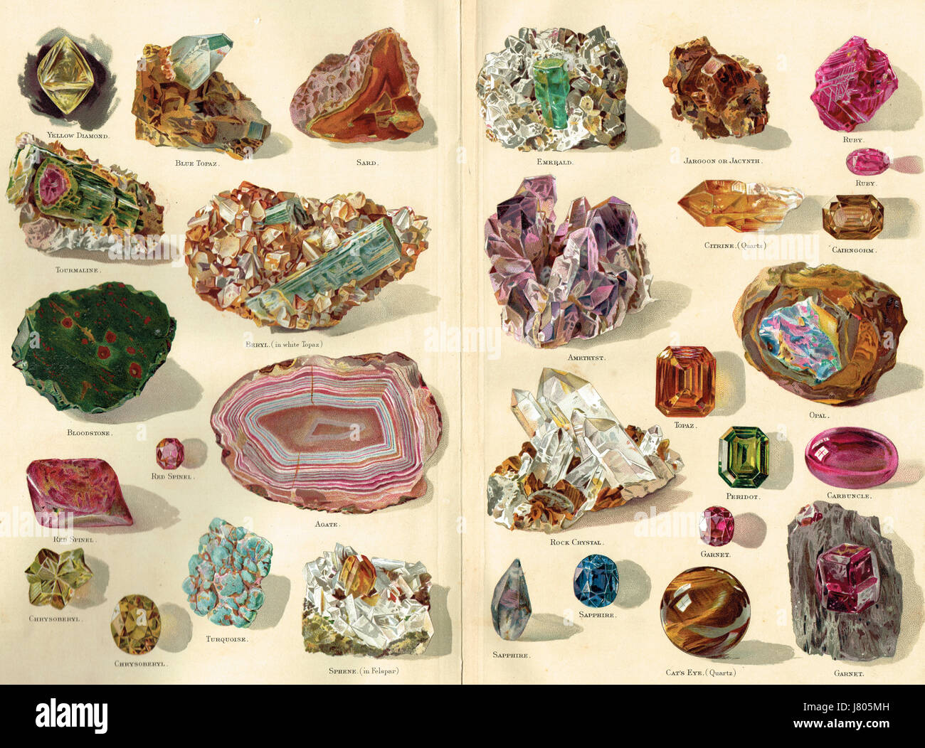 Illustration of Precious Stones selection 1898 - Stock Image