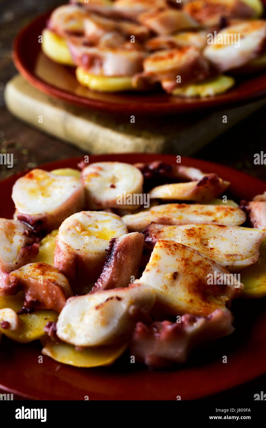 closeup of an earthenware plate with pulpo a la gallega, a recipe of octopus typical in Spain served on potatoes - Stock Image