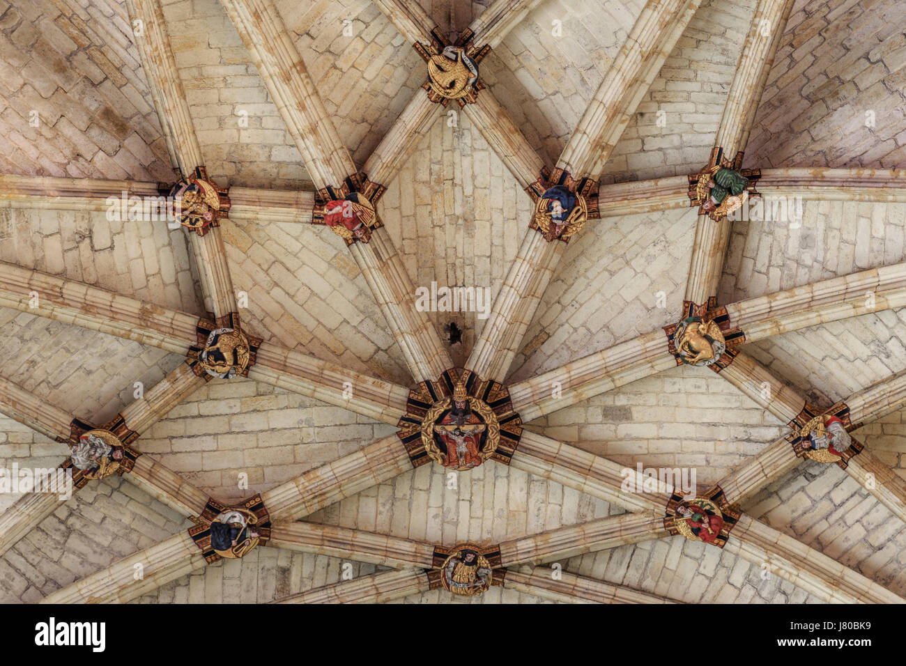 France, Gers,, condom, on the way to Saint Jacques de Compostela, Saint Pierre cathedral, ribbed vault of the ceiling - Stock Image