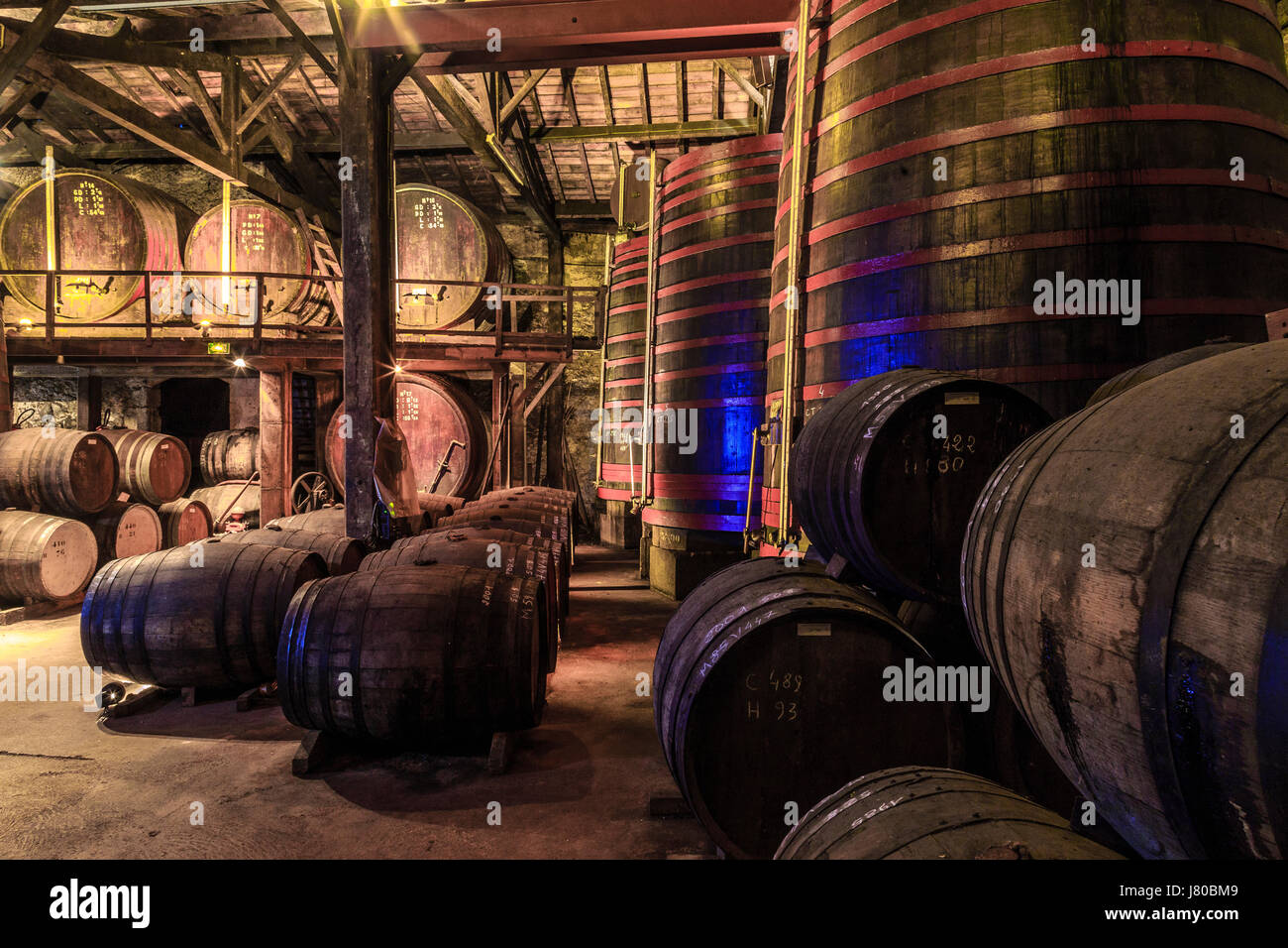 France, Gers, Condom, on the way to Saint Jacques de Compostela, Castle Cugnac, armagnac Ryst Dupeyron, cellar - Stock Image
