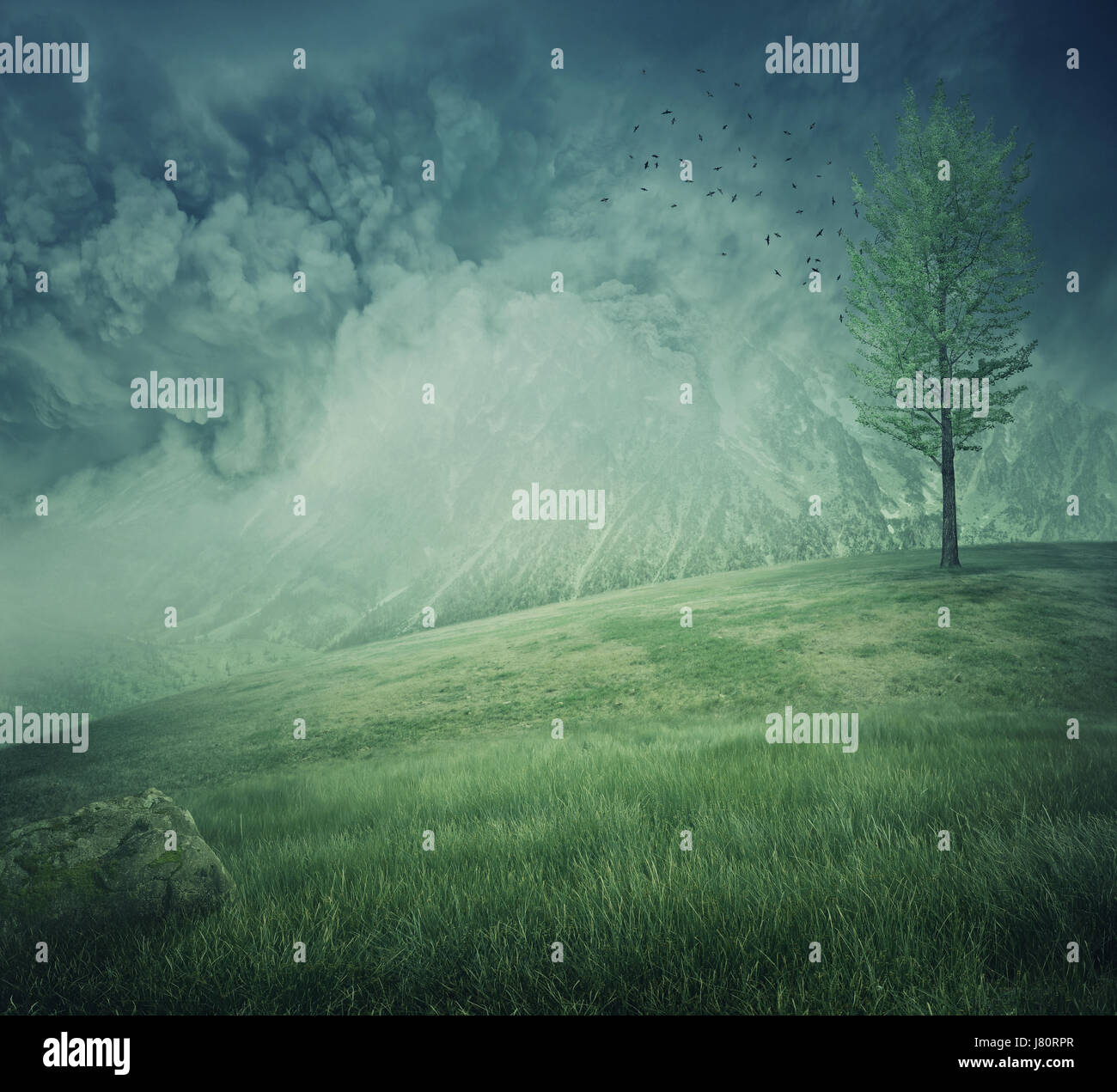 Mystycal mountain landscape with misty hills, green grass and a lone tree on the top. Beautiful and fresh background. - Stock Image