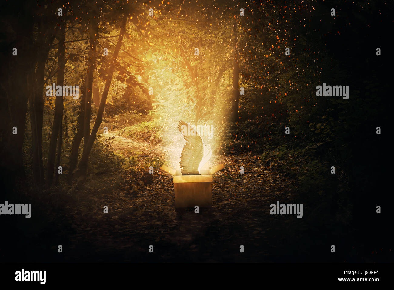 Magical cardboard box opened in a dark forest and a mystic creature with angel wings escape through a lot of fireflies - Stock Image