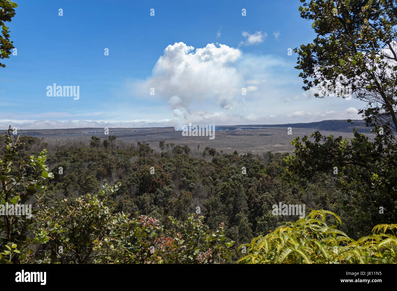 View of  Halema'uma'u crater on a sunny day - Stock Image