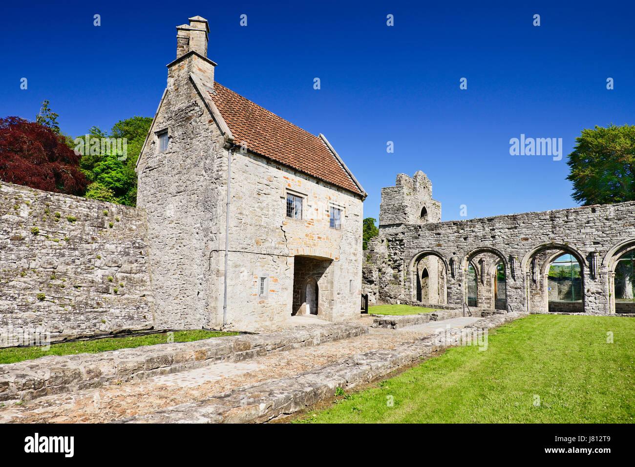 Ireland, County Roscommon, Boyle, Boyle Abbey, 12th century Cistercian ruin. - Stock Image