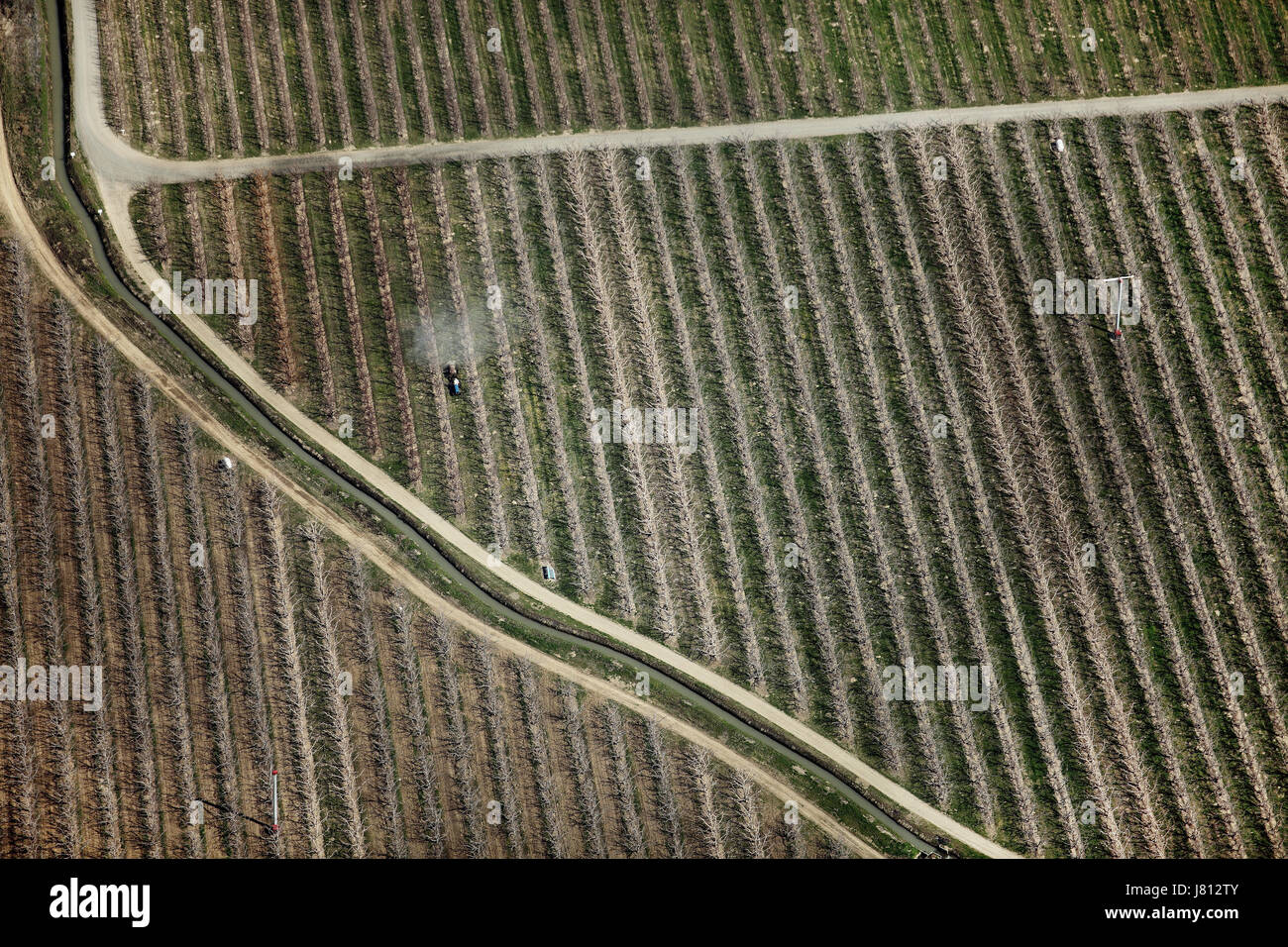 An aerial view of chemicals being applied to fruit orchards before the leaves begin to grow, in Washington state, Stock Photo