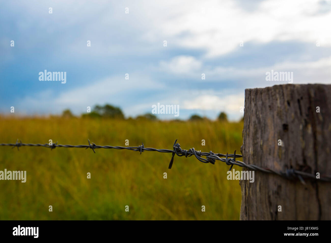 An old timber fence post and barbed wire strand - Stock Image