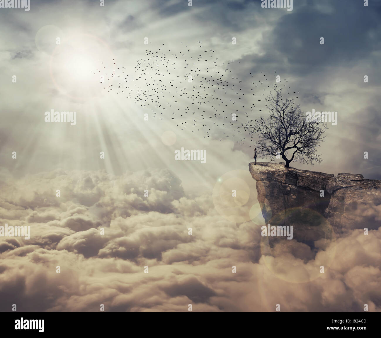 Young man standing on the peak of a cliff over clouds watching at a flock of birds flying from a strange, bare tree. - Stock Image