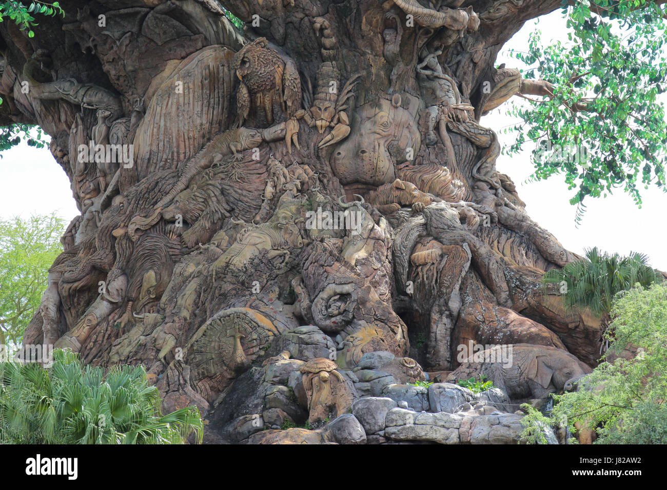The Tree of Life at Disney's Animal Kingdom in Florida - Stock Image