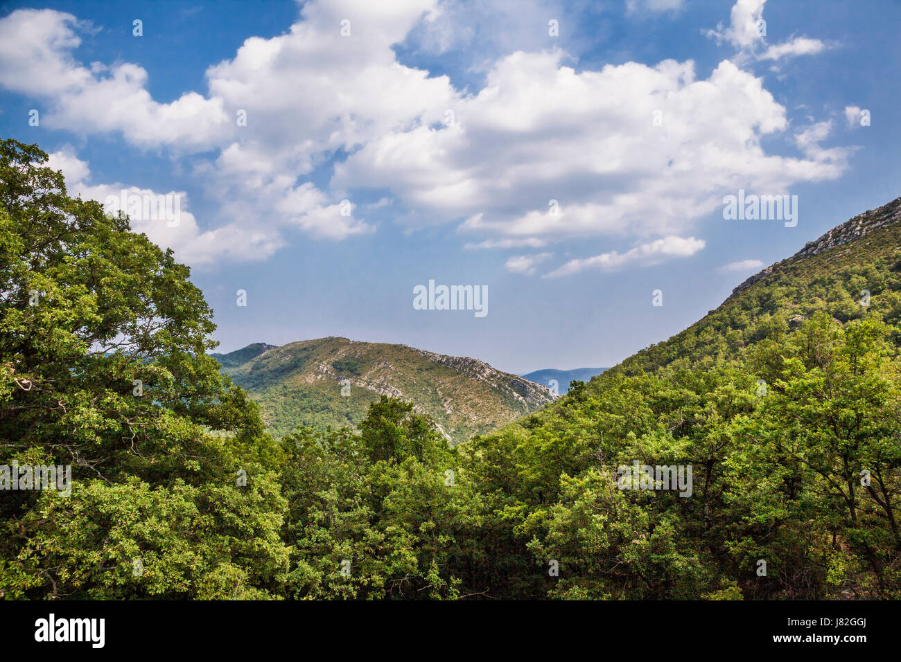 France, Languedoc-Roussillon-Midi-Pyrenees region, department Gard, view from Col du Lac in the Cevennes near Sumene - Stock Image