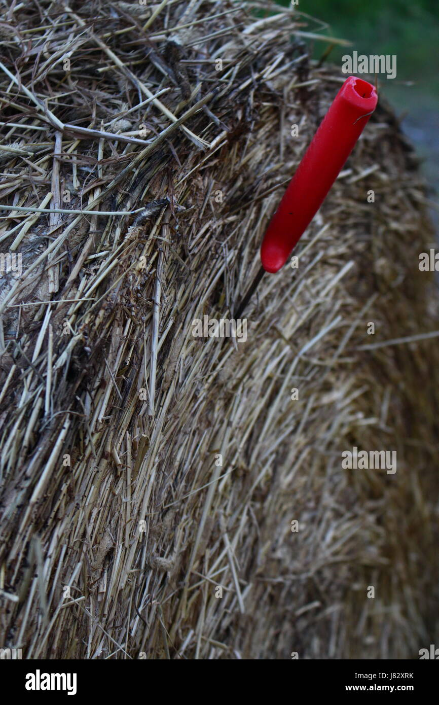 ball of hay with a knife in it in Swedish farm - Stock Image