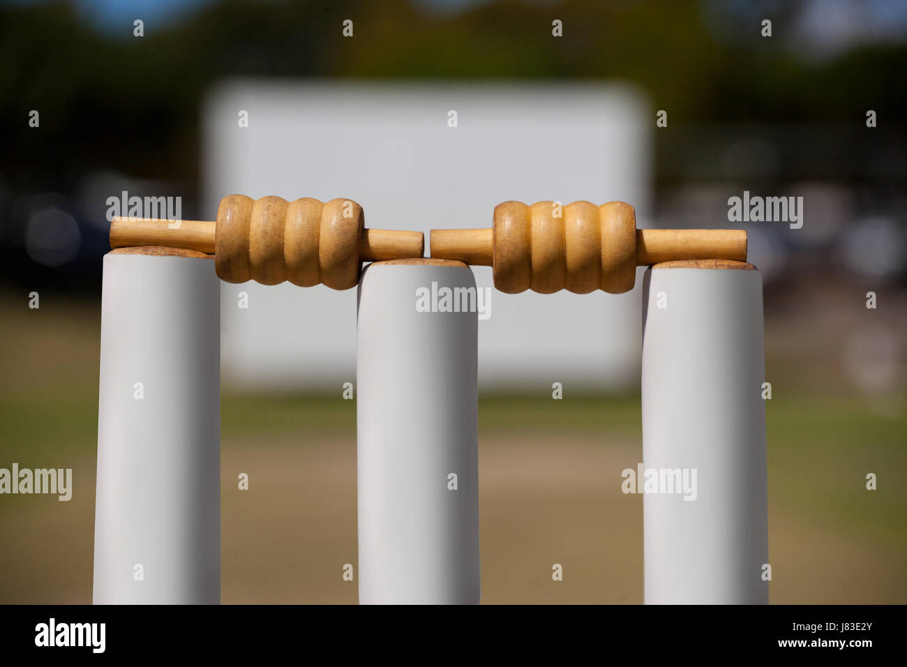 Close-up of bails on stumps at cricket field - Stock Image