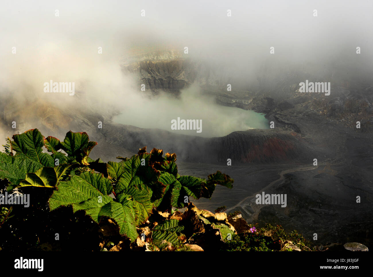 Steam rises from the crater at Poas Volcano in Costa Rica. - Stock Image