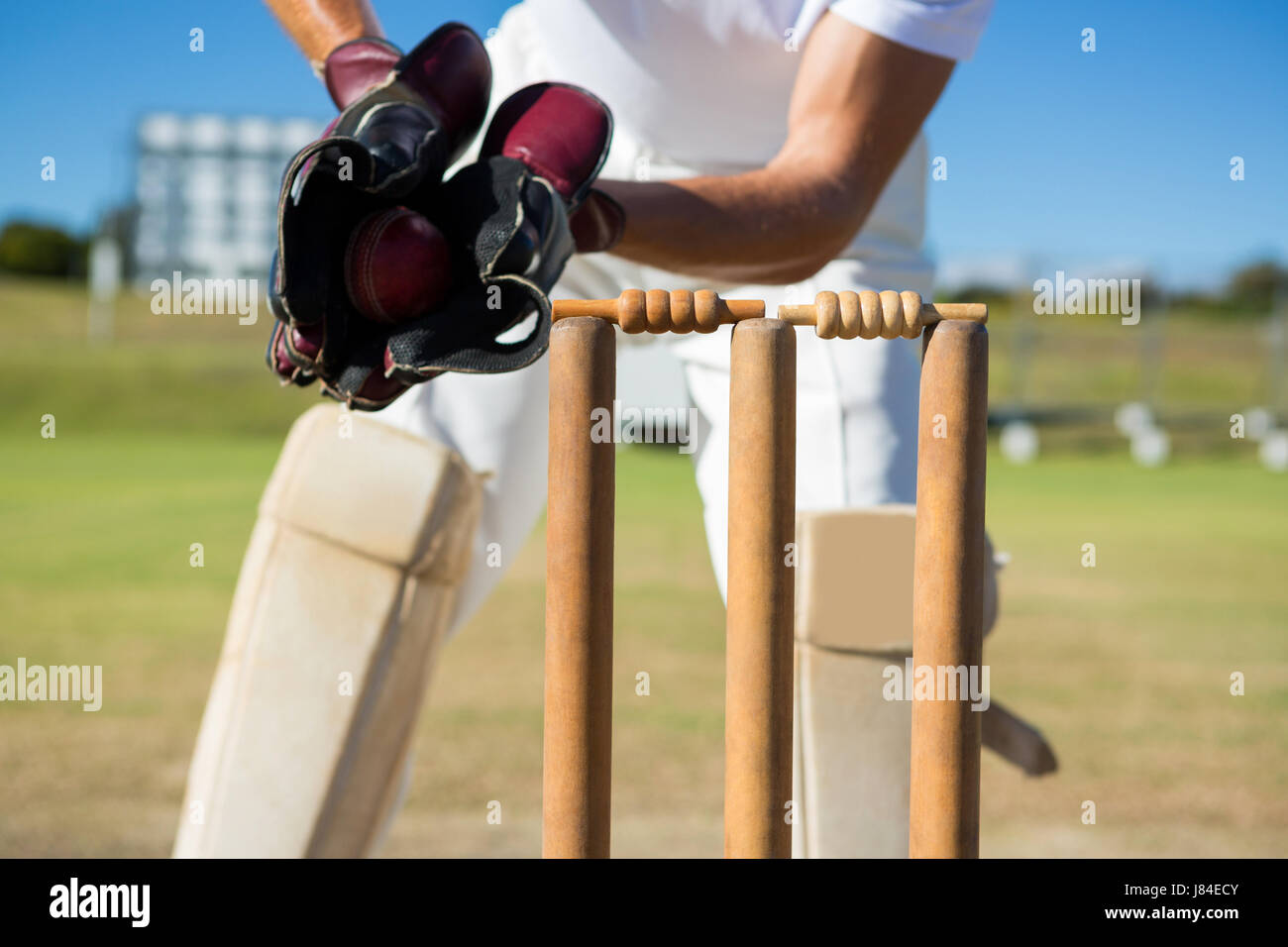 Cropped image of wicket keeper standing by stumps during match on sunny day - Stock Image