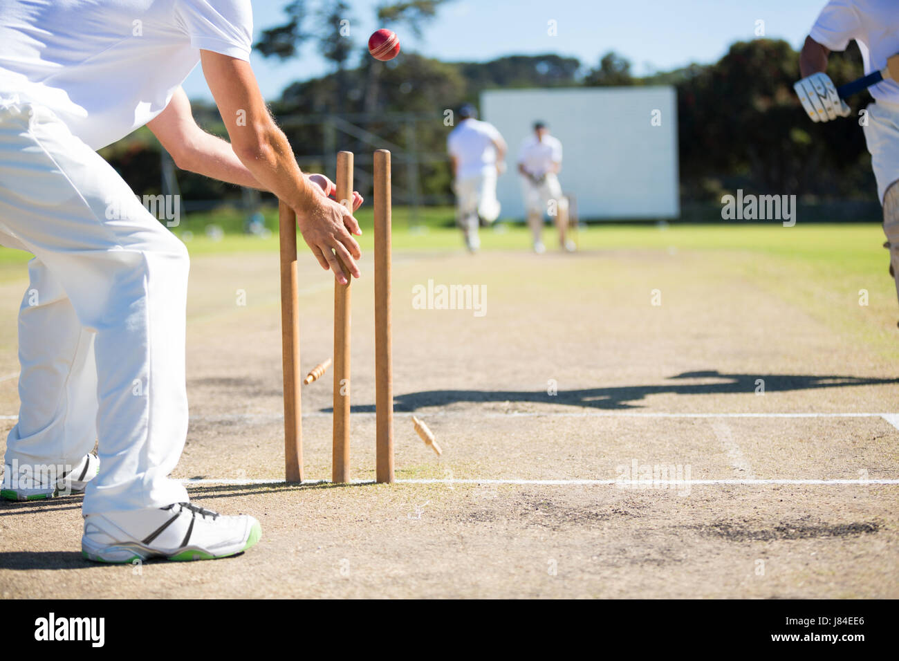Wicket keeper hitting stumps during match on sunny day - Stock Image