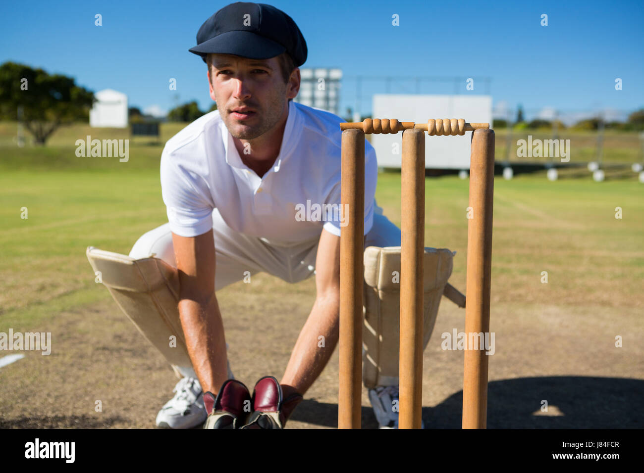 Wicket keeper crouching by stumps during match on sunny day - Stock Image