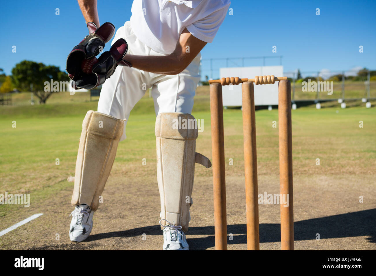Low section of wicket keeper standing by stumps during match on sunny day - Stock Image