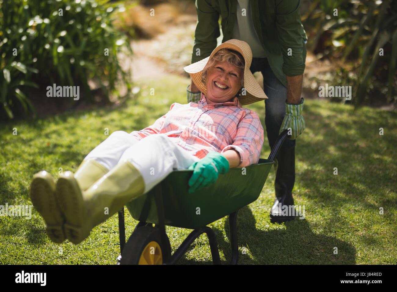 Mid section of man carrying smiling senior woman in wheel borrow at yard - Stock Image