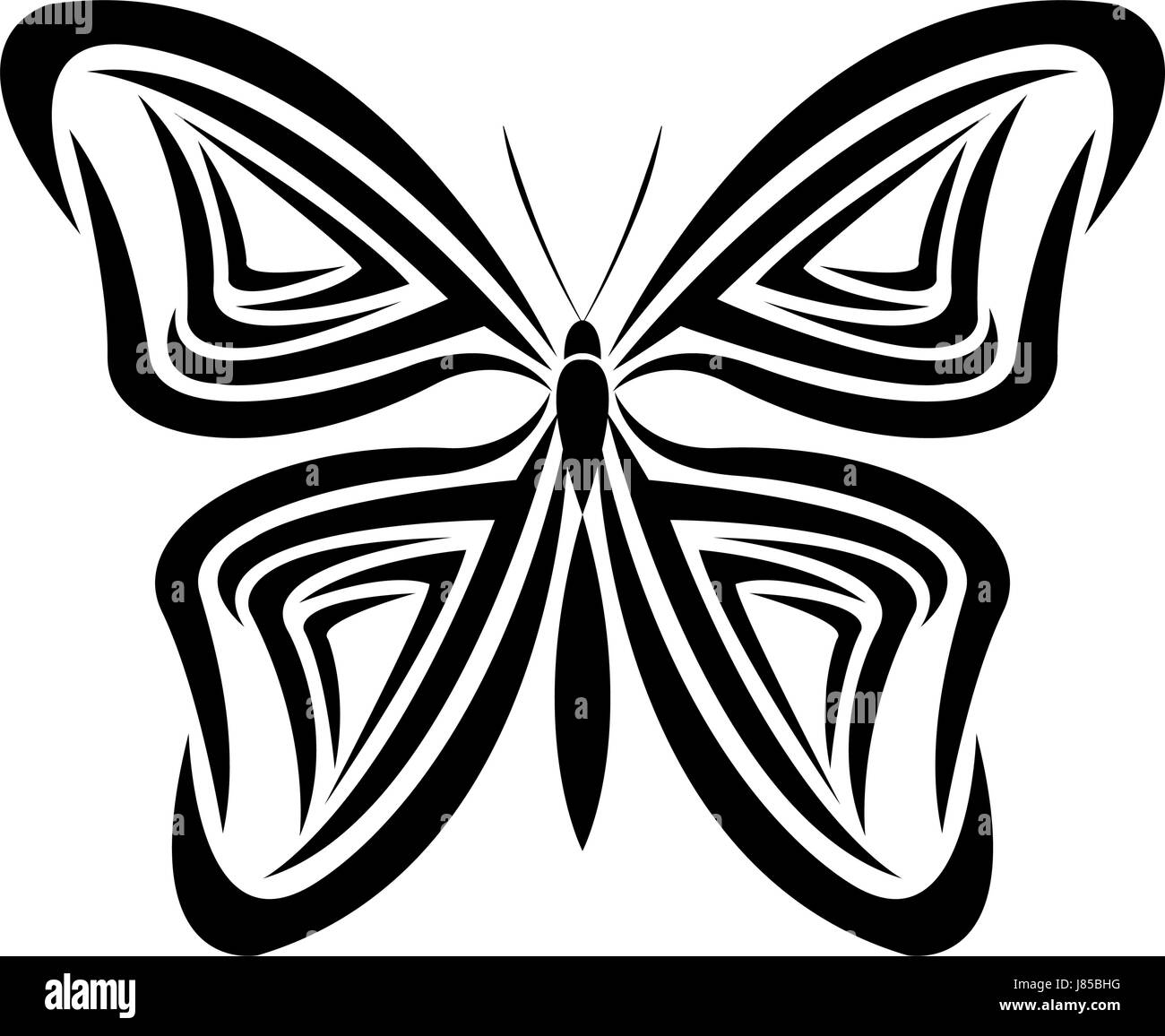 butterfly tribal tatto animal creativity design - Stock Image